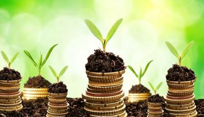 Jump Start  Your Green Technology Business Now!